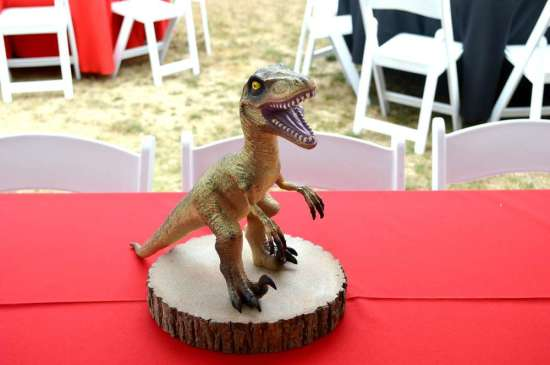 Jurassic Park Birthday - Birthday Party Ideas & Themes