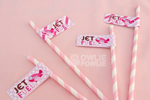 Pink Airplane Birthday Party - Birthday Party Ideas & Themes