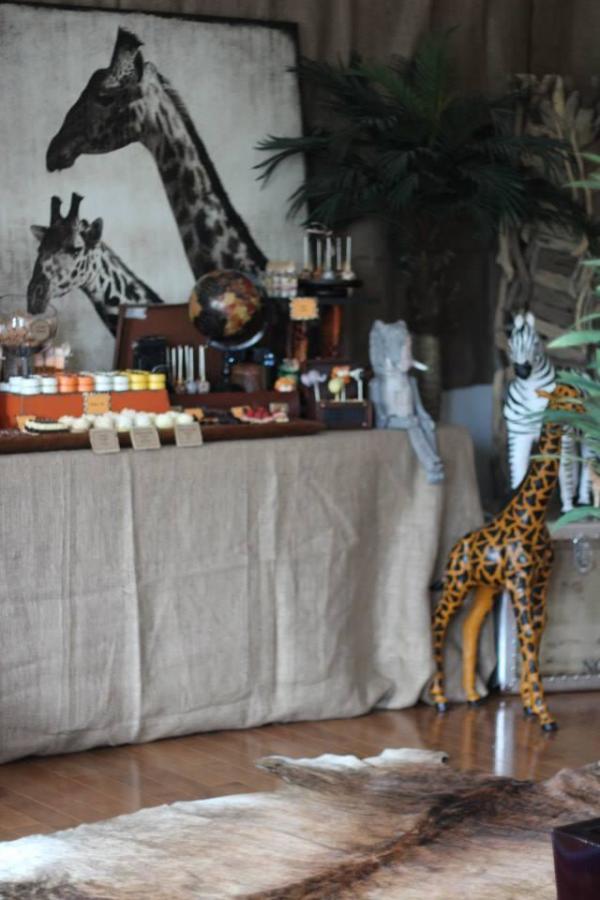 Wild animal safari birthday party ideas